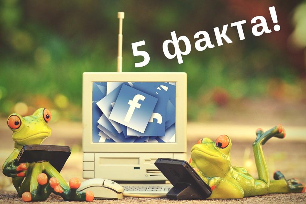5 факта за силата на фейсбук